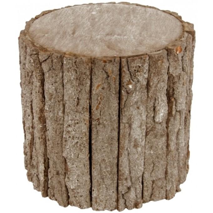 tronco de madeira alto